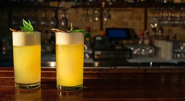 tropical-gin-fizz