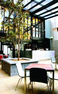 magnolia-courtyard