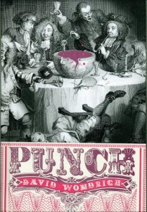 punch-cover