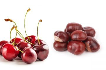 FRUIT-AND-STUFF