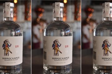 hippocampus-gin-trio