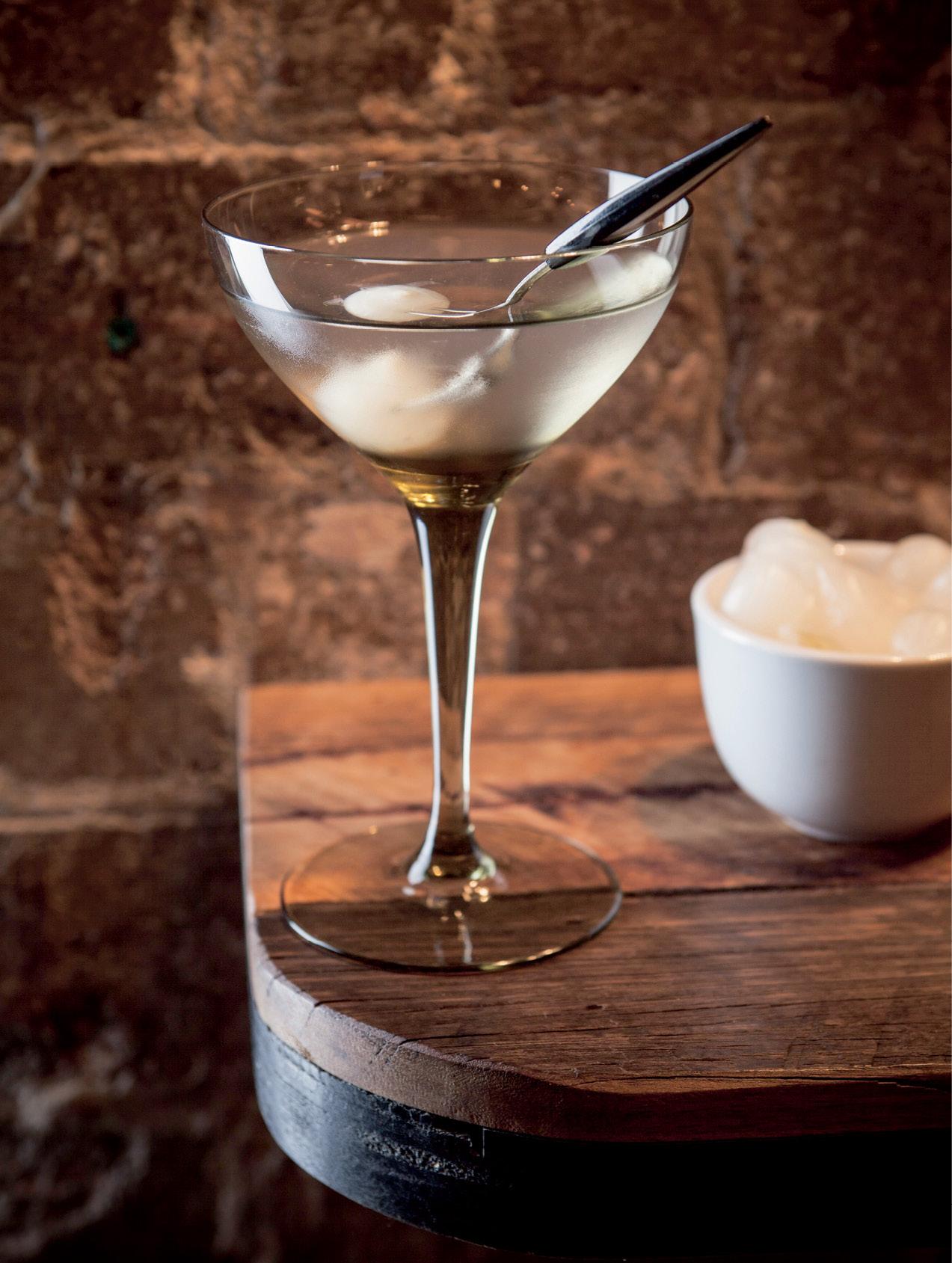recipe: gibson vs martini [18]
