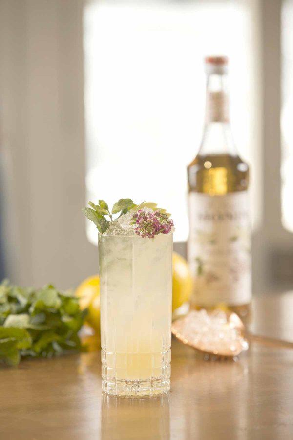 Spiced Elderflower Spritz